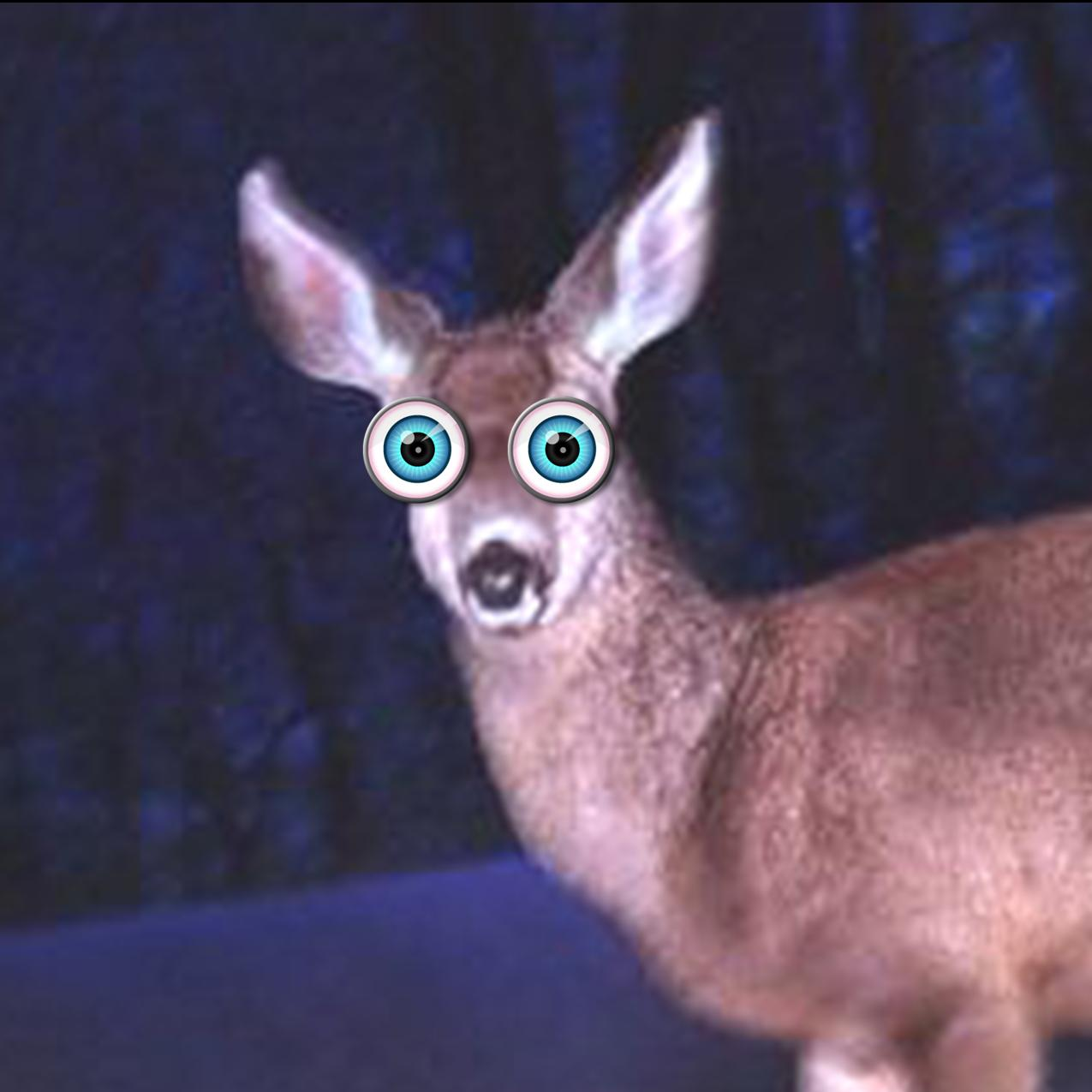http://brandextenders.files.wordpress.com/2010/11/deer-in-headlights.jpg