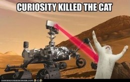 Curosity